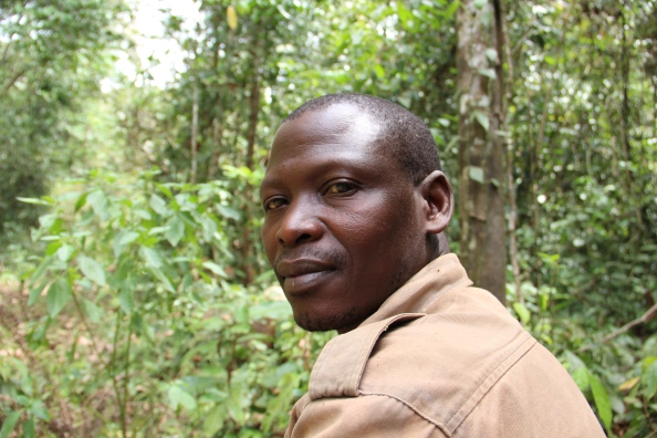 Moses Lemi in the Budongo Forest Reserve