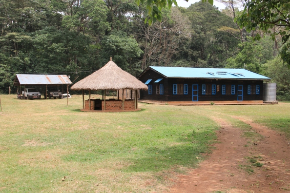 Budongo Conservation Field Station - the Banda and main house