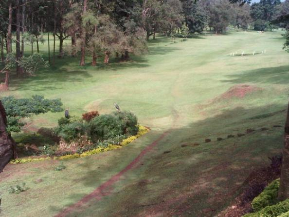 One of the many golf courses that can be found in and around Kampala